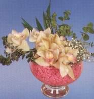 Burdur çiçek mağazası , çiçekçi adresleri  Dal orkide kalite bir hediye