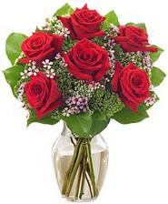Kız arkadaşıma hediye 6 kırmızı gül  Burdur internetten çiçek siparişi