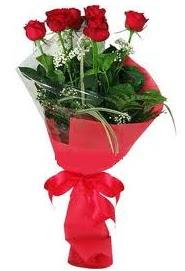 Çiçek yolla sitesinden 7 adet kırmızı gül  Burdur internetten çiçek satışı