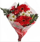 Mevsim çiçeklerinden görsel buket  Burdur çiçekçiler
