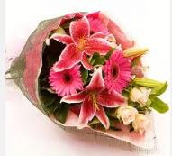 1 dal kazablanka ve mevsim çiçekleri  Burdur internetten çiçek siparişi