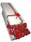 Burdur çiçekçi telefonları  11 adet 1.kalite magnum güller