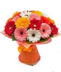 Renkli gerbera buketi  Burdur anneler günü çiçek yolla