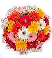 15 adet renkli gerbera buketi  Burdur yurtiçi ve yurtdışı çiçek siparişi