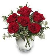 Vazo içerisinde 5 adet kırmızı gül  Burdur çiçekçi mağazası