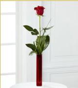 Vazo içerisinde 1 adet kırmızı gül  Burdur internetten çiçek siparişi
