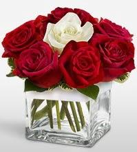 Tek aşkımsın çiçeği 8 kırmızı 1 beyaz gül  Burdur uluslararası çiçek gönderme