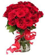 21 adet vazo içerisinde kırmızı gül  Burdur çiçek satışı