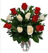 Vazo içerisinde 6 kırmızı 6 beyaz gül  Burdur hediye çiçek yolla