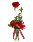 vazo içerisinde 1 adet kırmızı gül  Burdur çiçekçi telefonları