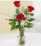 Vazo içerisinde 3 adet kırmızı gül  Burdur çiçek satışı