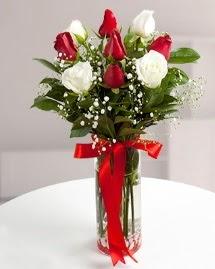 5 kırmızı 4 beyaz gül vazoda  Burdur cicekciler , cicek siparisi