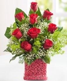 Cam içerisinde 9 adet kırmızı gül  Burdur internetten çiçek satışı