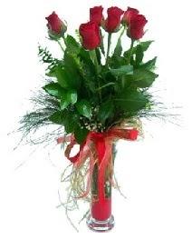 vazo içerisinde 5 kırmızı gül  Burdur güvenli kaliteli hızlı çiçek