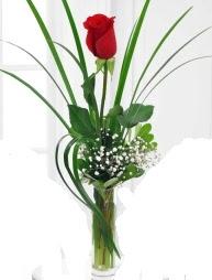 Cam içerisinde 1 kırmızı gül  Burdur çiçek gönderme sitemiz güvenlidir