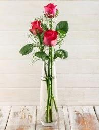 Cam içerisinde 3 kırmızı gül  Burdur çiçek satışı