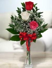 Camda 2 kırmızı 1 beyaz gül  Burdur ucuz çiçek gönder