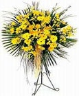 Burdur yurtiçi ve yurtdışı çiçek siparişi  Sari kazablanka Ferforje