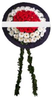 mozele çiçeği  Burdur hediye sevgilime hediye çiçek