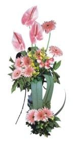 Burdur güvenli kaliteli hızlı çiçek  Pembe Antoryum Harikalar Rüyasi