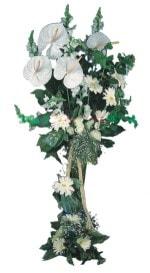 Burdur çiçek mağazası , çiçekçi adresleri  antoryumlarin büyüsü özel