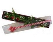 Burdur hediye çiçek yolla  3 adet gül.kutu yaldizlidir.