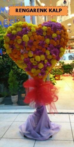 Ankara mevsim çiçeklerinden kalp perförje  Burdur çiçekçi telefonları