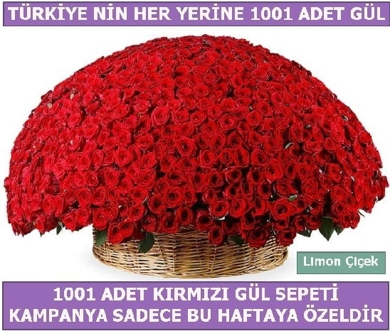 1001 Adet kırmızı gül Bu haftaya özel  Burdur İnternetten çiçek siparişi