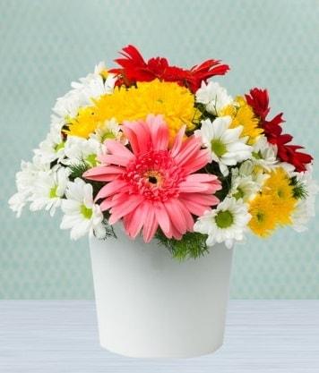 Seramik Vazoda Gelbera ve Papatya  Burdur çiçek gönderme