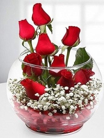 Kırmızı Mutluluk fanusta 9 kırmızı gül  Burdur çiçek siparişi sitesi