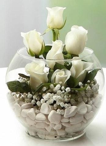 Beyaz Mutluluk 9 beyaz gül fanusta  Burdur çiçek siparişi sitesi
