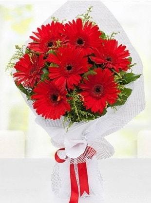 Kırmızı Gelbera Buketi  Burdur internetten çiçek siparişi
