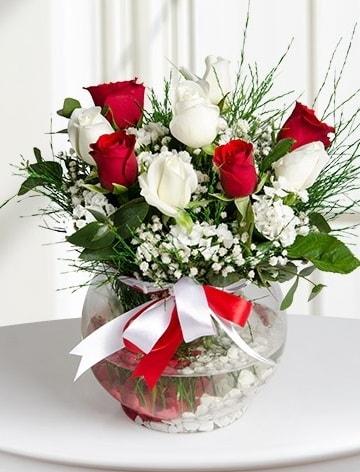 Aşk Küresi  5 beyaz 5 kırmızı gül fanusta  Burdur internetten çiçek satışı