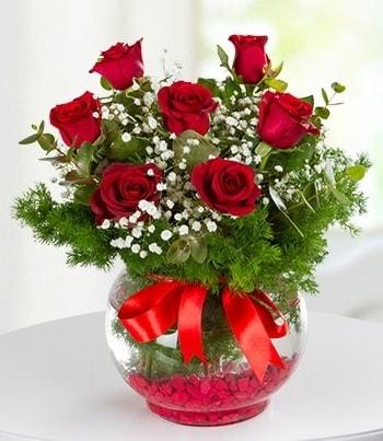 fanus Vazoda 7 Gül  Burdur çiçek , çiçekçi , çiçekçilik