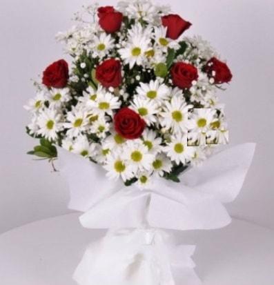 7 adet kırmızı gül ve papatyalar krizantem  Burdur internetten çiçek satışı