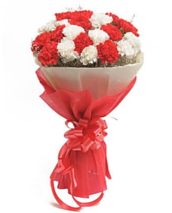 21 adet kırmızı beyaz karanfil buketi  Burdur çiçek satışı