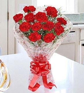 12 adet kırmızı karanfil buketi  Burdur İnternetten çiçek siparişi