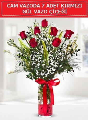 Cam vazoda 7 adet kırmızı gül çiçeği  Burdur çiçek gönderme sitemiz güvenlidir