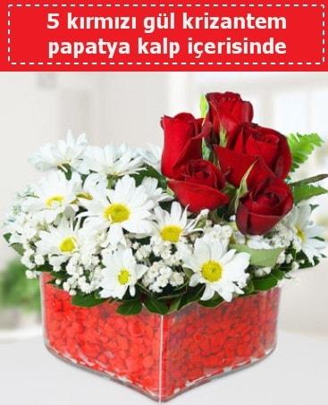 mika kalp içerisinde 5 kırmızı gül papatya  Burdur çiçek gönderme