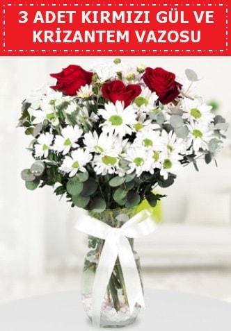 3 kırmızı gül ve camda krizantem çiçekleri  Burdur çiçek gönderme