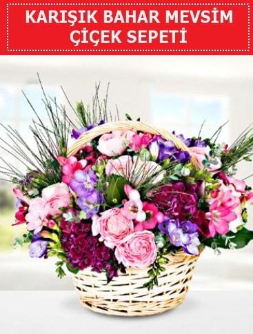 Karışık mevsim bahar çiçekleri  Burdur ucuz çiçek gönder