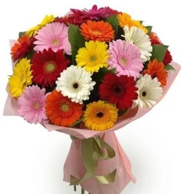 Karışık büyük boy gerbera çiçek buketi  Burdur çiçek satışı